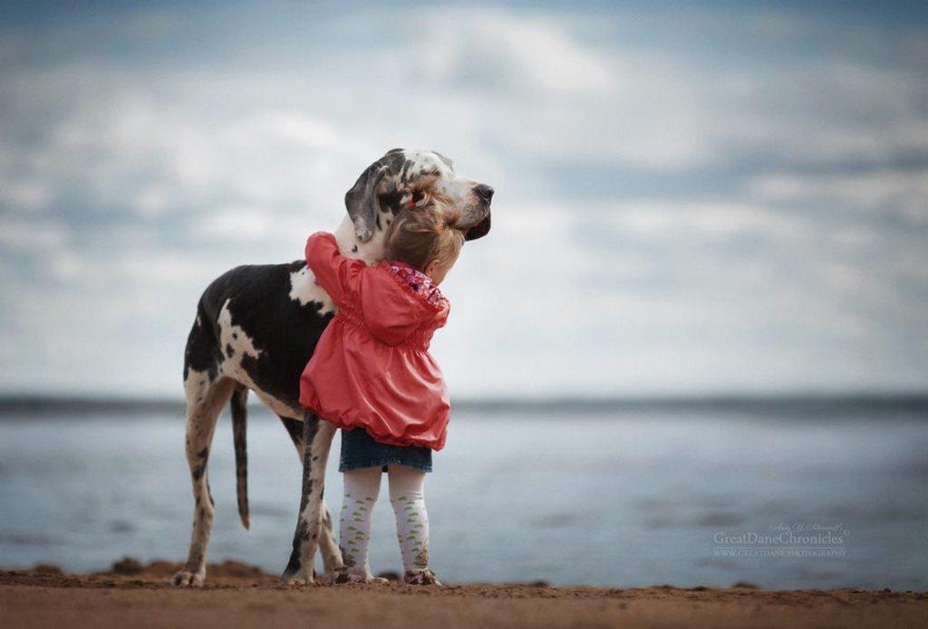 Questa è un'immagine di un bimbo e un cane