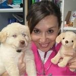 veterinario-aurora-caruso