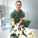 veterinario-stefano-negri