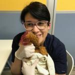 veterinario-marta-enrica-conti