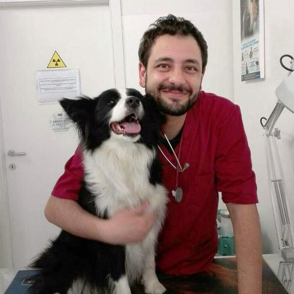 Giuseppe Defilippi veterinartio on line